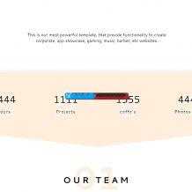 100套精美的HTML页面网站源码